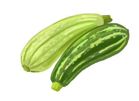 zucchini: picture of two zucchini