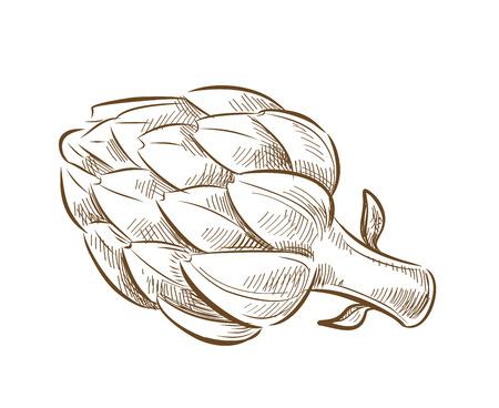 beeld van artisjok