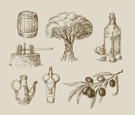 ベクターの手の描かれたオリーブ オイルのスケッチと自然