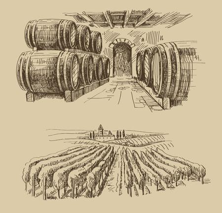 bodegas: vector de barriles dibujados a mano dibujo y doodle de viñedo