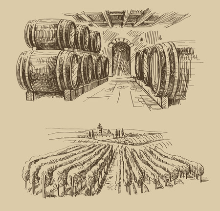 italy landscape: vector hand drawn barrels sketch and vineyard doodle