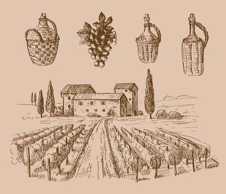 tuscany landscape: vector hand drawn wine sketch and vineyard doodle