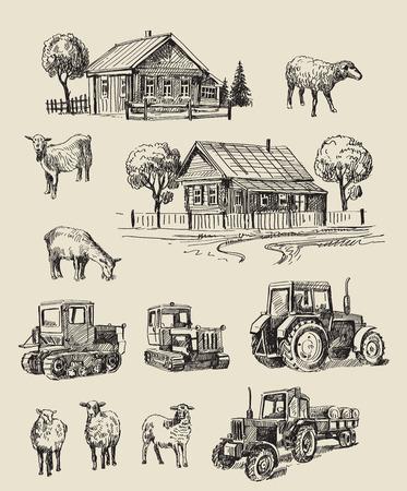 ketch: vector seamless farm and animals hand drawn set