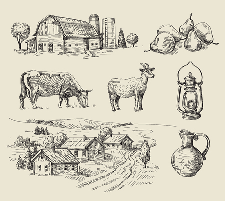 conjunto: dibujado a mano conjunto de vectores granja y animales sin fisuras Vectores