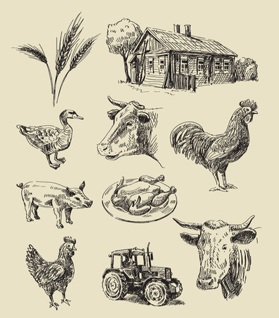 hand set: vector seamless farm and animals hand drawn set