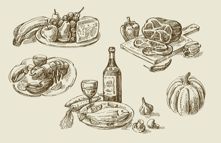 wine and food: vector hand drawn food sketch and kitchen doodle