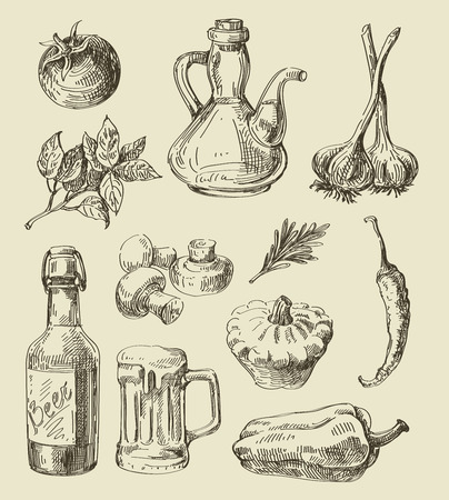 cook: vector hand drawn food sketch and kitchen doodle