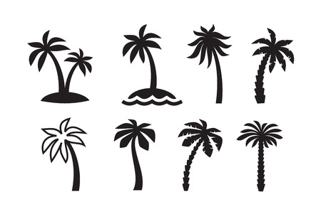 tree silhouettes: vector black palm icon on white background