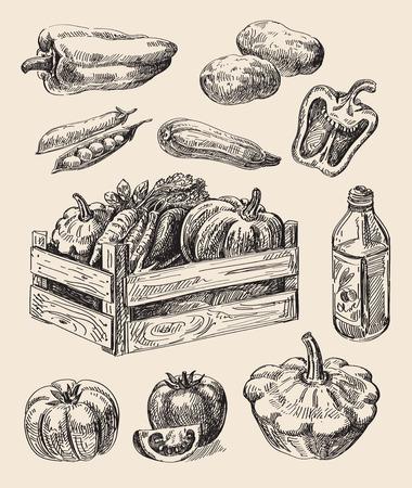 boceto dibujado alimentos vector de la mano y la cocina del doodle