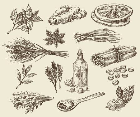 vector hand drawn food sketch and kitchen doodle Фото со стока - 48122173