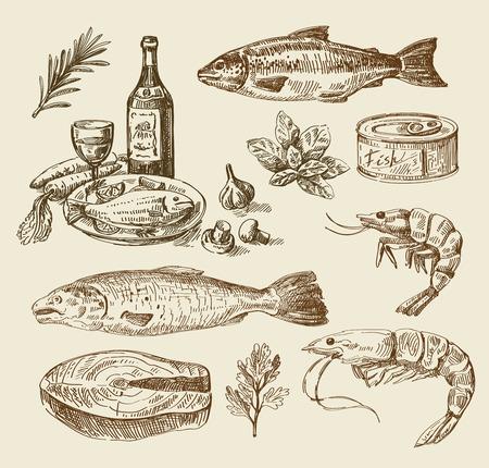 gamba: boceto dibujado alimentos vector de la mano y la cocina del doodle Vectores