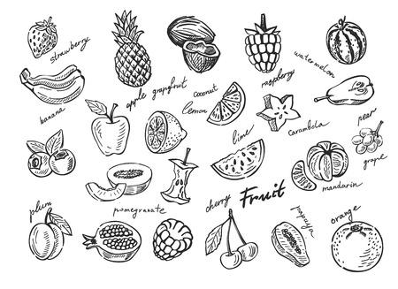 zeichnen: Vektor handgezeichneten Skizze doodle set Obst Illustration