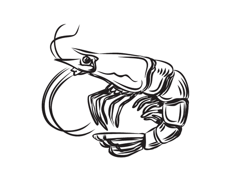 crayfish: vector black prawn icon on white background