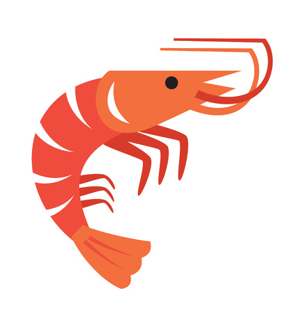 vector color prawn icon on white background Vettoriali