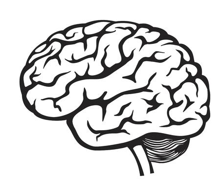 mente humana: vector Icono del cerebro negro sobre fondo blanco