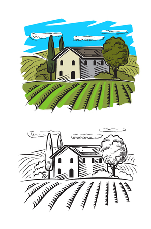 viticulture: vector doodle image of village and landscape