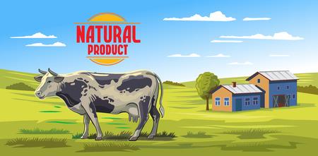 buey: vector de la vaca del color y de la granja en el fondo blanco Vectores