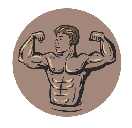 male model torso: vector bodybuilder showing muscles on white background