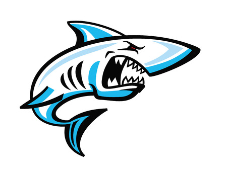 ready logos: vector color shark icon on white background