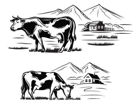 agrarian: vector black cow and farm on white background