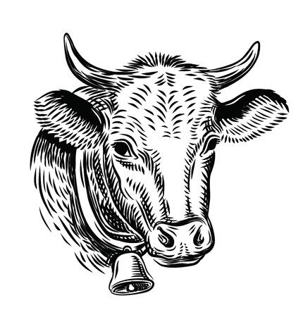 bull head: cow black head vector on white background