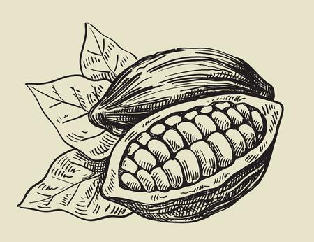 vector negro granos de cacao en el fondo de color beige