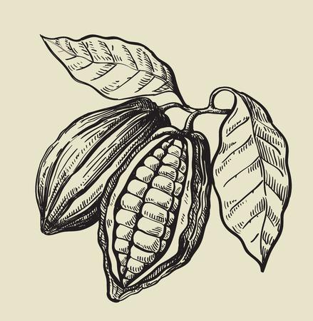 vecteur noir fèves de cacao sur fond beige Vecteurs