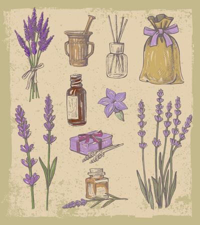 vector hand drawn lavender set on vintage background Vettoriali