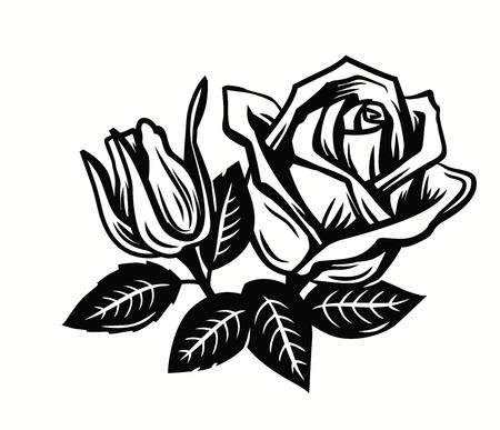 contorno de la flor hermosa rosas sobre blanco