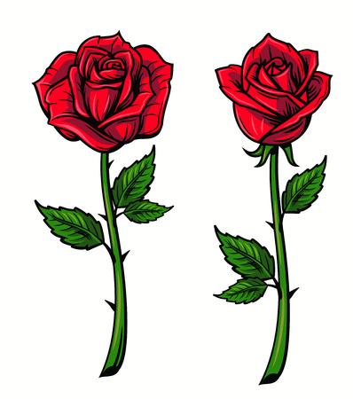 흰색 배경에 빨간 장미 만화 스타일 스톡 콘텐츠 - 64172719