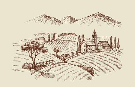 vector vintage hand drawn illustration of wineyard Vettoriali