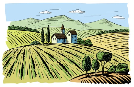 agrarian: Vector illustration landscape nature with agrarian fields