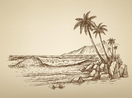 oiseau dessin: plage vecteur été avec des palmiers illustration