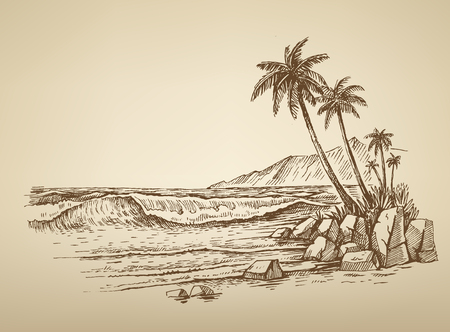 summer trees: vector summer beach with palm trees illustration
