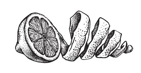 Hand draw of lemon