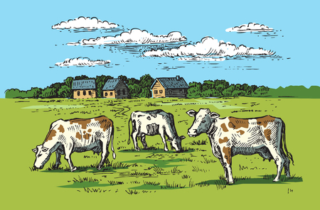 village and landscape Illustration