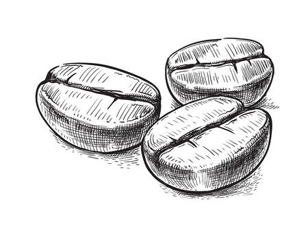 chicchi di caff?: Simbolo del chicco di caffè Vettoriali