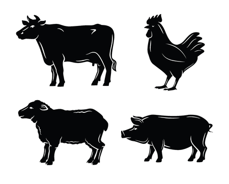 food: butchers guide symbols Illustration