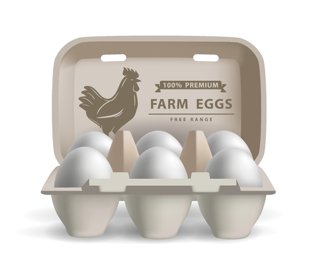 box: vector illustration eggs