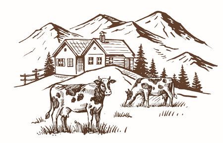 vector image of village and landscape farm Illustration