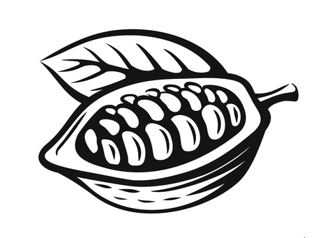 vector black cacao beans