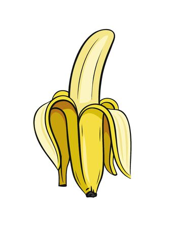Sketch of half peeled banana. Vector on white background