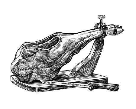 Sketch of jamon. Hand drawn illustration