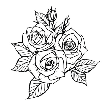 Rose by hand drawing. Beautiful flower on white background Stock Photo