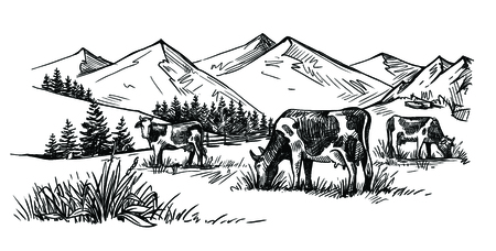 three cows in the mountains drawn by hand Banco de Imagens