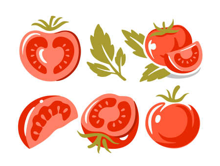 tomatoes on white background collection