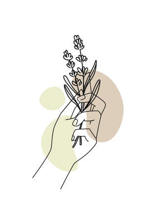 Female hands with lavender and abstract background. Background for cosmetics, packaging, products