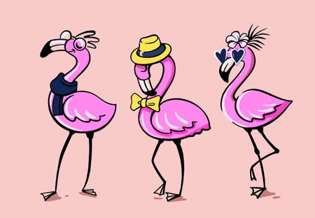 Three flamingos stand in fashion accessories