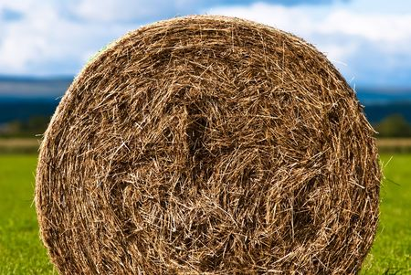 combines: Hay bales on the field Stock Photo