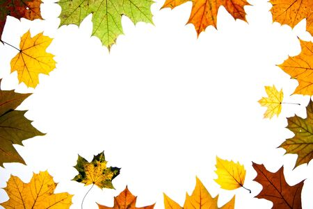 autumn leaves with copy space centered photo